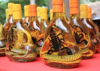 Whisky cobra, kalajengking, kobra, dan kaki seribu.(bbs)