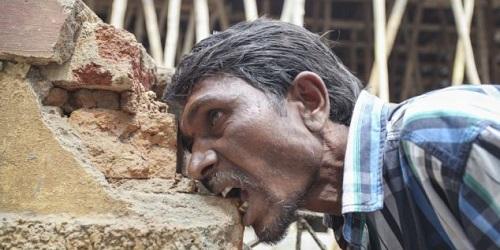 Pakkirappa saat menggigit batu bata.(Daily Mail)
